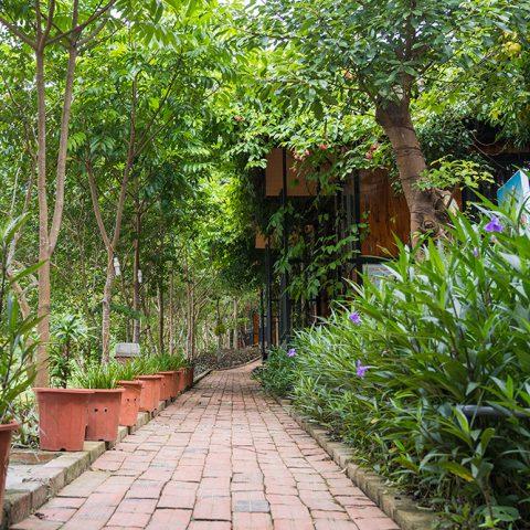 Không gian Coto Gardens CS1